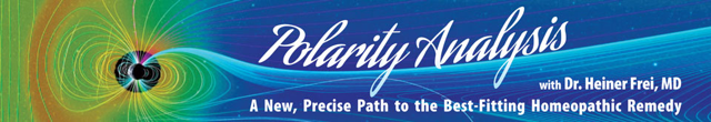 Polarity Analysis banner